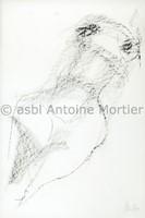 Mortier Nu 1961 (Copy)